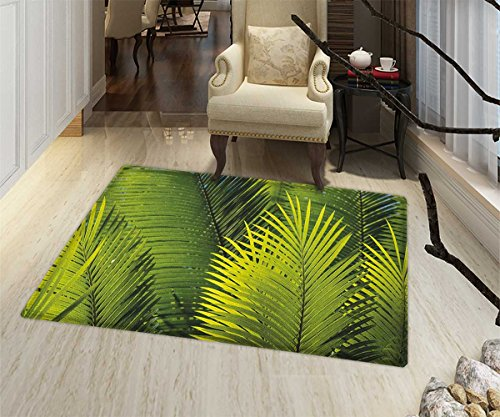 Nature Area Silky Smooth Rugs Tropical Foliage Pattern with Exotic Leaves Palm Tree Photography Hawaii Greens Door Mats for inside Non Slip Backing 20''x32'' Fern Green by lacencn