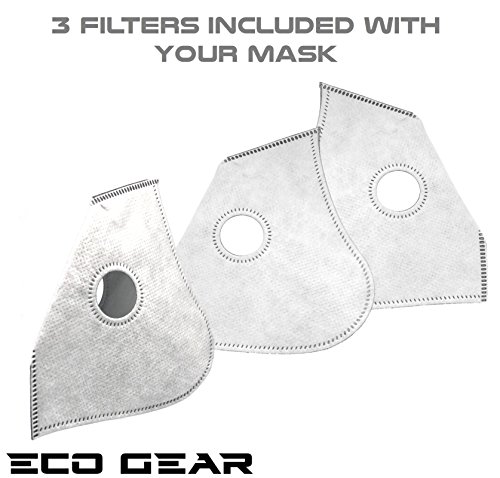 eco gear anti pollution face mask n95