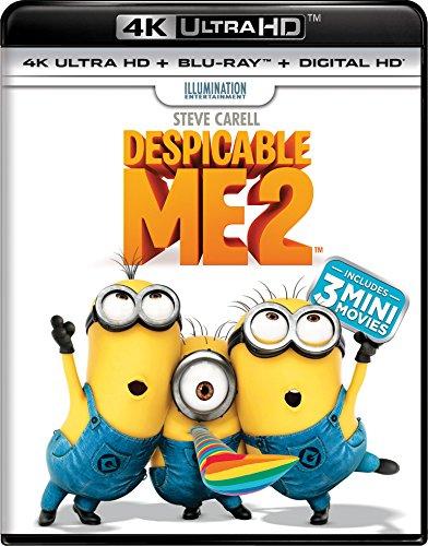 Despicable Me 2 [Blu-ray] (Despicable Movie)