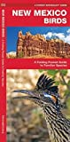 New Mexico Birds: A Folding Pocket Guide to Familiar Species (A Pocket Naturalist Guide)