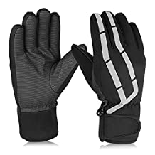 Ski Gloves, Hicool Adult Waterproof Thermal Winter Ski Gloves Snowboard Snowmobile Motorcycle Cycling Outdoor Sports Gloves