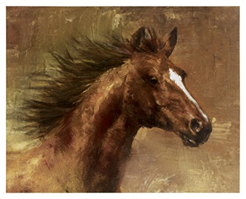 nature Design - Aidric Wall Art - Giclee Reproduction - Vintage Casual - Multi-Color ()