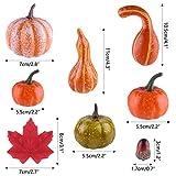 ASTARON 56 Pcs Autumn Fall Decorations,Mini