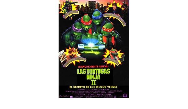 Amazon.com: Teenage Mutant Ninja Turtles 2: The Secret of ...