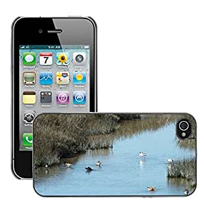 Just Phone Cover Etui Housse Coque de Protection Cover Rigide pour // M00140229 Gallinas Agua Patos Birds agua de // Apple iPhone 4 4S 4G