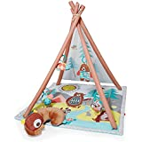 Skip Hop Camping Cubs Activity Gym, Baby/Infant, Multi