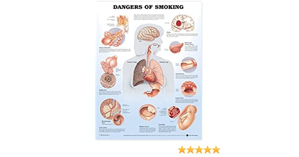 Industrial & Scientific Laminated Wall Chart Effects of Smoking chart