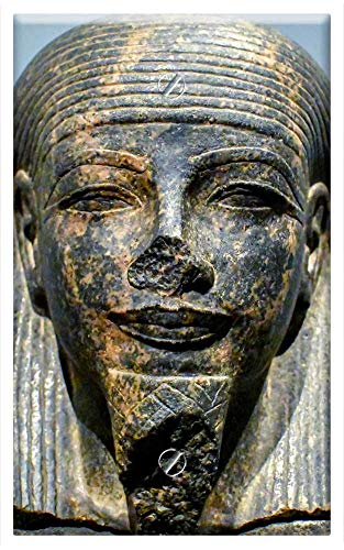 Single-Gang Blank Wall Plate Cover - Sculpture Statue Art Face Ancient Egyptian Museum 1 ()