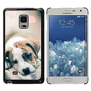 FlareStar Colour Printing Puppy Fur Blurry Cute Baby Dog Lights cáscara Funda Case Caso de plástico para Samsung Galaxy Mega 5.8 / i9150 / i9152