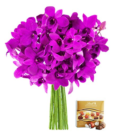 KaBloom The Ultimate Purple Orchid Bouquet: 20 Exotic Purple Dendrobium Orchids from Thailand without Vase and One Box of Lindt Chocolates by KaBloom
