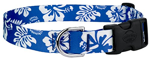 Country Brook Petz | Royal Blue Hawaiian Featherweight Deluxe Dog Collar - (Hawaiian Dog Collar Collars)