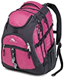 High Sierra Access Backpack, Purple Razz Mystic/Mercury, 20 x 15 x 9.5-Inch