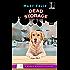 Dead Storage (A Maggie McDonald Mystery)