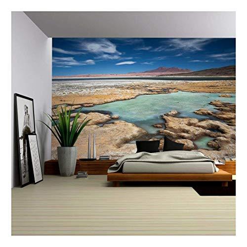 (wall26 - Salar De Tara, Desert Atacama, Chile - Removable Wall Mural | Self-Adhesive Large Wallpaper - 100x144 inches)
