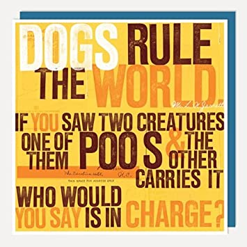 Dogs Rule The World Birthday Card