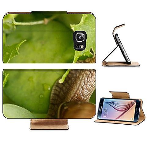 Luxlady Premium Samsung Galaxy S6 Edge Flip Pu Leather Wallet Case IMAGE 20591196 Snail in the - Cameo Garden