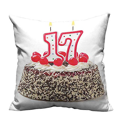 YouXianHome Lovely Cushion Covers Birthday Cake with Cherries and Sprinkles and Candles Photo Art Resists Stains(Double-Sided Printing) 24x24 inch Cherry Blossom Cake Candle