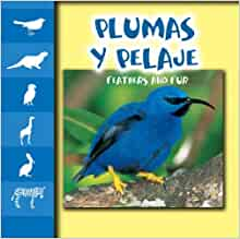 Plumas Y Pelaje / Feathers and Fur (Let's Look at Animal Discovery