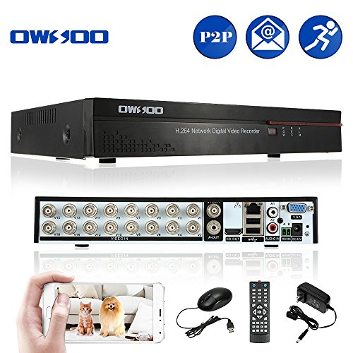 16 ch dvr with cameras - 8