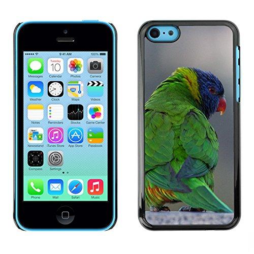 Premio Sottile Slim Cassa Custodia Case Cover Shell // F00014469 Loriquet oiseau // Apple iPhone 5C