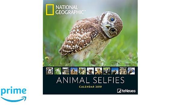 Animal Selfies 2020: National Geographic Broschürenkalender ...