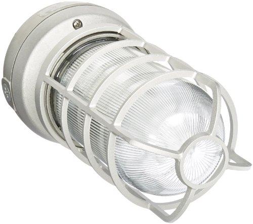 (RAB Lighting VX2F42 Vaporproof Ceiling Fixture CFL Lamp with Clear Prismatic Glass Globe, Triple Type, Aluminum, 42W Power, 3200 Lumens, 277V, 1/2