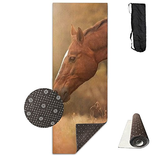 OU2yFP Horse Meets Dog Comfort Foam Yoga Mat for Exercise, Yoga, and ()