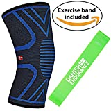 DANISH ENDURANCE Knee Support Sleeve Including Exercise Band (Small)
