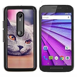 YiPhone /// Prima de resorte delgada de la cubierta del caso de Shell Armor - Gato siberiano Gris Naranja Nebelung - Motorola MOTO G3 / Moto G (3nd Generation)
