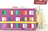 Bundle: Sculpey III Polymer Clay and 11 Piece Darice Modeling Clay Tool Set + Gift Bag