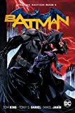 : Batman Deluxe Edition Book 4