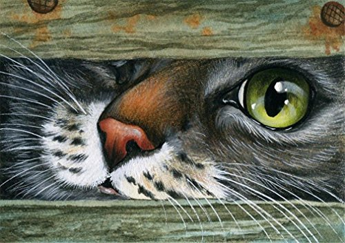 May Trees Paint by Numbers, DIY Painting by Numbers for Adults Kids Beginner - Cat Face Big Eye 16x20 inch (Framed)]()