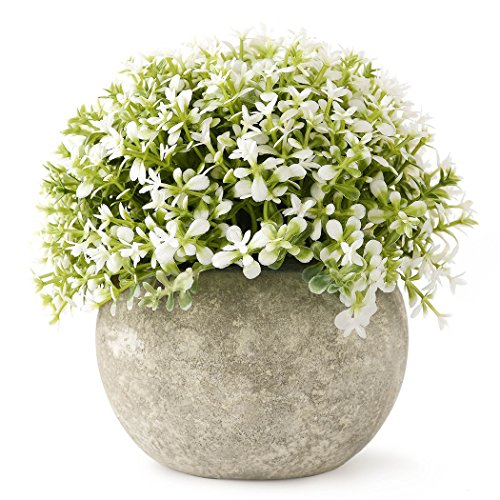 Kumii Small Artificial Topiary Plant in Pot, Baby's tears Home Decor, Fake Potted Plant for Desk Office Living Room Decoration (Withe)