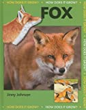 Fox, Jinny Johnson, 1599203545