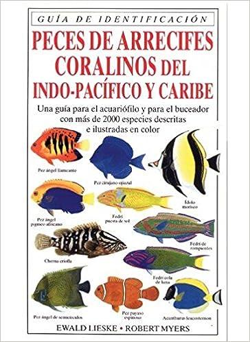 PECES DE ARRECIFES CORALINOS GUIAS DEL NATURALISTA-PECES-MOLUSCOS ...