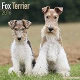 Fox Terrier Calendar - Breed Specific Fox Terrier Calendar - 2016 Wall calendars - Dog Calendars - Monthly Wall Calendar by Avonside