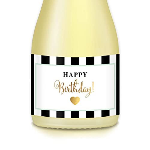Happy Birthday Gifts Female Present Ideas Decorations Ladys Surprise Party Set Of 20 Mini Champagne Wine Bottle Labels Cheers To Mom Auntie Sister