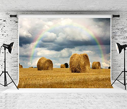 Kate 7x5ft Farm Backdrops for Farmland Photography Backdrop Autumn Haystack Background Autumn Crops Harvest Backgrounds Rainbow Photo Backdrop Shooting Props