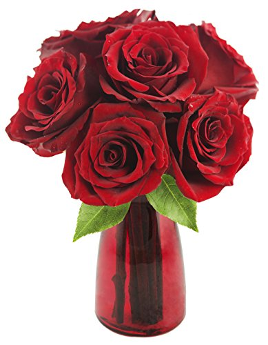 romantic-red-roses-6-red-roses-with-vase-by-kabloom