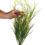 Factory-Direct-Craft-Yellow-and-Green-Artificial-Wild-Trumpet-Flower-Bush-for-Decorating-Crafting-and-Creating