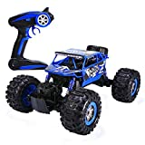 Distianert 1/12 Scale RC Truck 4WD Electric Amphibious RC Car