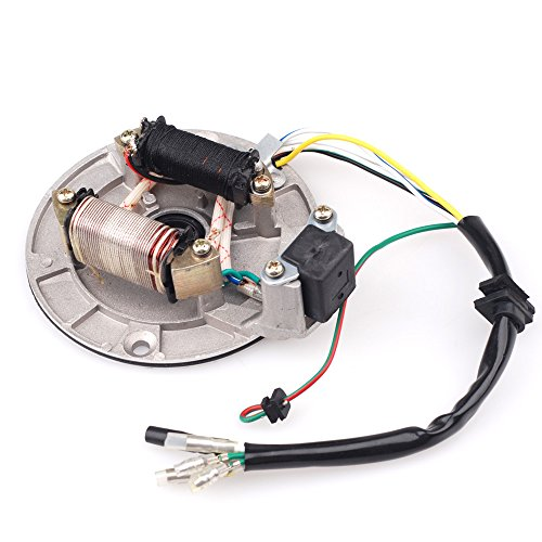 125CC Pit Bike Ignition Stator Magneto Plate for XR50 SDG SSR 107 110 125 M IS01