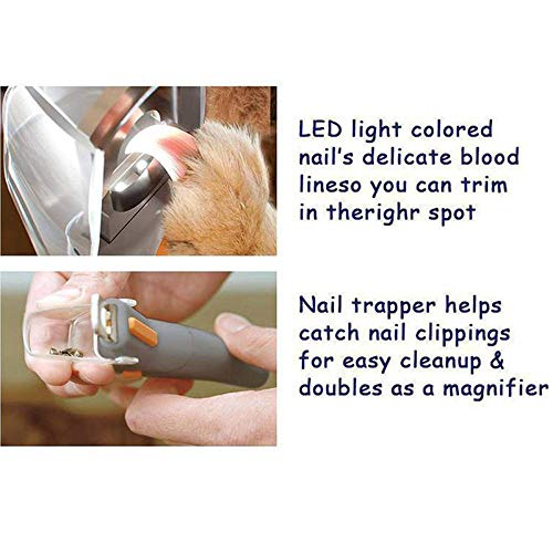 Howardee Pet Products Pet Nail Trimmer Cat Dog Nails Clippers Grinders Scissors with LED Light