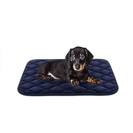 Amazon.com: AIPERRO - Alfombrilla lavable para cama de perro ...
