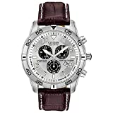Citizen Men's BL5470-06A Stainless Steel Eco-Drive Watch with Leather B