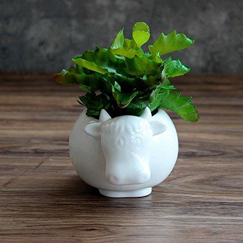 Best Garden Tools 1pc Cute Cow White Ceramic Planter for Succulents Decorative Succulents Pot Mini Flower Pot Home Garden Decoration
