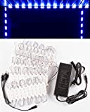 40ft Storefront 80 pieces blue 5630 LED Light module with UL 12v 6 Amps AC Power package