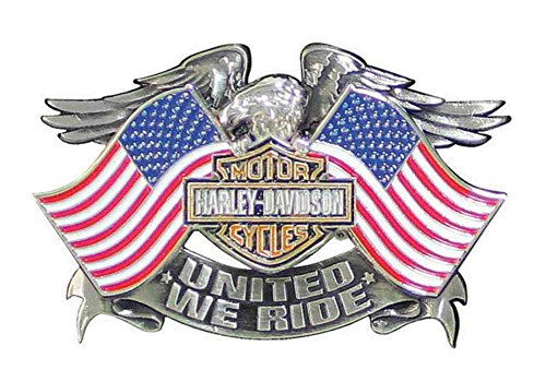 Ride Eagle (Harley-Davidson Men's United We Ride Pin, Eagle American Flags Graphic P125844)