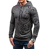 Rankei Fashion Hoodie Sweatshirts 3D Dragon Print Casual Hooded Hip Hop Sportswear,XXX-Large,Darkgray