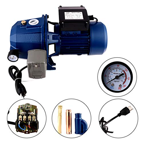 SHYLIYU Surface Pumps Shallow Well Jet Pump with Pressure Switch 110V/60HZ 0.75KW 1HP 1 inch Outlet to Supply Fresh Water to Residential Homes Farms Cabins